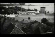 Kenigsberg video