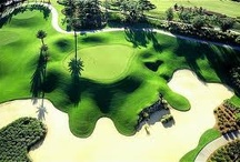 I wish to golf here