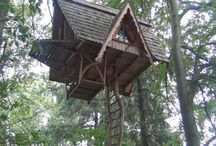 Treehouses, tiny houses, mobile houses, maybe a tent or yurt too / by Emma Weisman