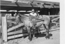 Horses / Things I Love