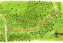 Walks in Cheddar
