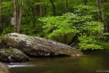 Appalachia Landscapes / My landscape photography from the Appalachian region of the eastern United States.