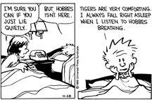 Calvin and Hobbes / by Fa Mulan