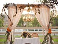 A DIY wedding / by Ashlee Keith