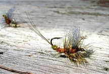 Fly-fishing / Must choose fly-fishing. But if I'm in the mountains, any fishing will do. / by Tracy Toler Lanktree