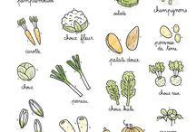 Légumes saison