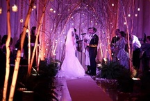 Hall of Springs Weddings in Saratoga Springs NY / An exclusive Mazzone Hospitality wedding and events venue located in iconic Saratoga Springs, NY