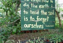 Inspiration / Quotes, images, inspiration related to earth, farming, gardening, environment, food, sustainability, etc.