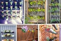 tuin ideën voor particuliere tuin / verzameling leuke plaatjes ter inspiratie wat je thuis in je eigen tuin kan doen.