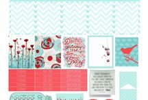 Erin Condren and Recollections Inspiration