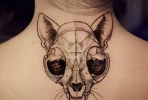 cat skulls / by Delectably Deviant