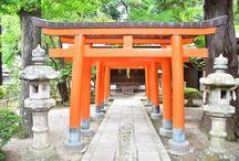 奈良ウォーク 薬師寺 2017