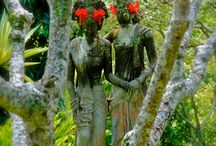 Balinese Culture / Pictures that reflect the culture in Bali