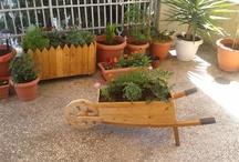 Handmade Garden Solutions / Handmade wooden wheelbarrow planter box