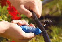 Drip irrigation / by Cyndi Hamm