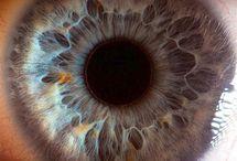 Eyes / by Duncan Moon