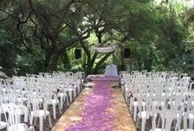Special Event Rentals / There is a unique location nestled in nature for your special occasion at the Santa Barbara Museum of Natural History and Ty Warner Sea Center.