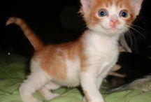 cute <3 :D