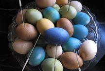 Easter ideas & tutorials