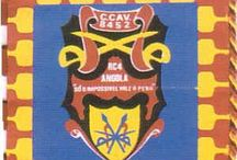 Companhias de Cavalaria Guiné