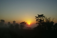 Favorite Places & Spaces / Everything that's Assam