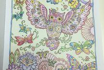 Creative Haven Owls