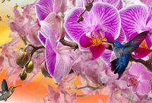 Itt a Tavasz ! - Tavaszi ünnepek / Itt a Tavasz ! Mosolyog az ibolya, Itt a Tavasz trallala...