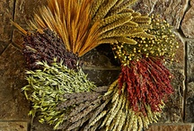 ✭ LAMMAS Magick ✭ / Lammas, also known as Lughnasadh, is one of the 8 Pagan Sabbats, the first harvest festival, celebrated on August 1st ~ http://www.thewitchymommy.com