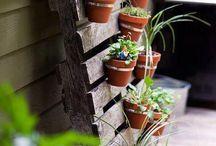 Giardino home Made!