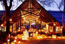 Africa & Safari / We're planning a luxury safari!