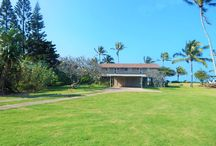 Beach Cottages / Magnificent ocean views & privacy 2 cottages accommodating up to 14 guest .