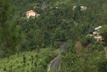 Writers Retreat in the Himalayas Satkhol Sitla Mukteshwar India / Hill house