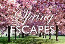 Spring Getaways / Find your perfect Spring Getaway for weekend getaways & unique holidays