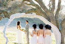 Wedding Photography / by QuiltsofDestiny Robertson