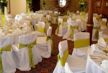 Green Bows - Chair Covers