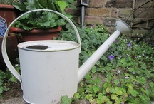 Gorgeous Gardening ideas / Stuff I would like for my garden / by Annie Mole