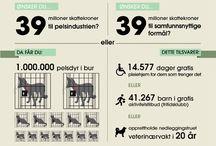 Infografikk på norsk
