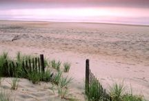Cape Cod / by Terry Crawford