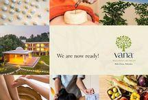 Wellness Offerings / Retreat | Wellness | Ayurveda | Sowa Rigpa | Yoga | Natural therapies | Spa | Fitness | Aqua