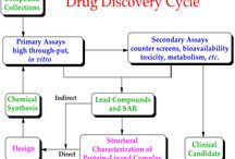 Drug Discovery / http://www.creative-biostructure.com/drug-discovery_7.htm Modern drug discovery involves the identification of screening hits, medicinal chemistry and optimization of those hits to increase the affinity, selectivity, efficacy/potency, metabolic stability, and oral bioavailability. Creative biostructure can adopt optimal strategies to reduce the potential of side effects of drugs or increase the half-life of drugs during drug discovery procedure.