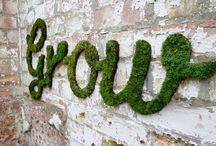 Garden time! Let's grow...
