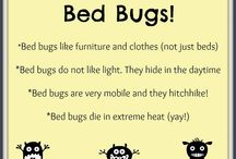 Bed Bug Prevention / How to prevent bed bugs from invading your life.