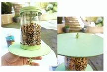 bird feeder/bird baths diy