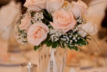Wedding / by Gina Mills