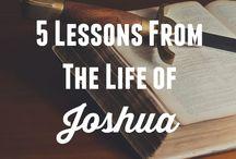 My Joshua