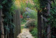 Shhh.. / Secret gardens