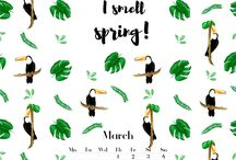 Wallpapers from @ovsieienko_illustration / Wallpapers  Calendar  March Spring Green