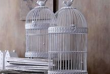 obsessions : bird cages / by Jessica D'Onofrio Photography