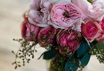 Flowers ♡♡♡♡