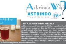 Astrindo Wiki